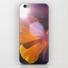 Sunlit Flower iPhone & iPod Skin