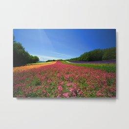 Flower Bed Metal Print