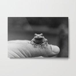 The Little Guy Metal Print