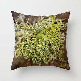 Dishwashing Throw Pillow