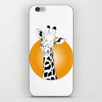 giraffes iPhone & iPod Skins featuring giraffes  by Eda ERKOVAN