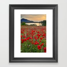 Field of poppies in the lake Framed Art Print