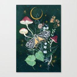 Mushroom night moth Canvas Print