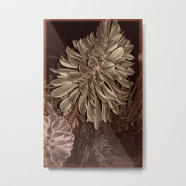 Sepia succulents Metal Print
