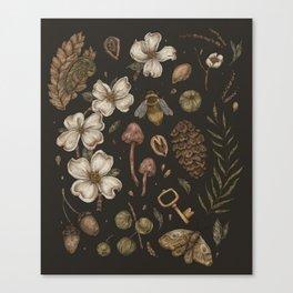 Nature Walks Canvas Print