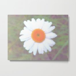 Windsome Daisy Metal Print