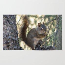 Soldotna Red Squirrel Rug