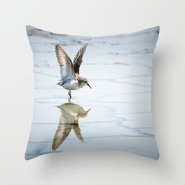 Sanderling Reflection Throw Pillow