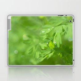 Fresh Morning 415 Laptop & iPad Skin