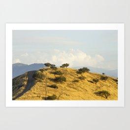 Chena hill  Art Print