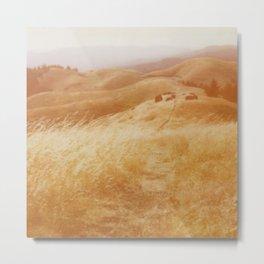 Mount Tamalpais Metal Print