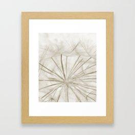 Dandelion Neutral Closeup Framed Art Print