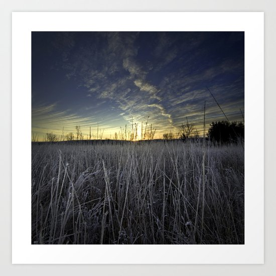 At Dawn in the Grass Art Print