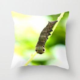 Caterpillar On A Green Plant #decor #society6 Throw Pillow