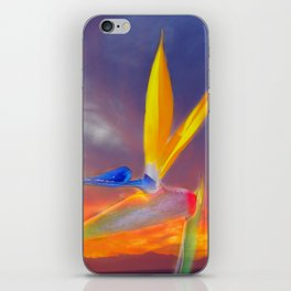 Sunset Flow iPhone Skin