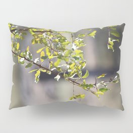 Sunny green African tree Pillow Sham