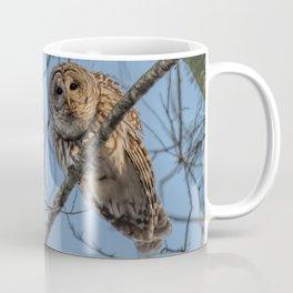 End of day Barred Owl Coffee Mug