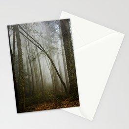 Misty Woods Stationery Cards