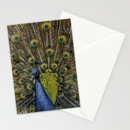 Peacock Plumage Stationery Cards