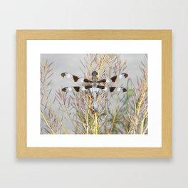 dragonfly tank Framed Art Print