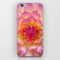 Pure Joy iPhone & iPod Skin