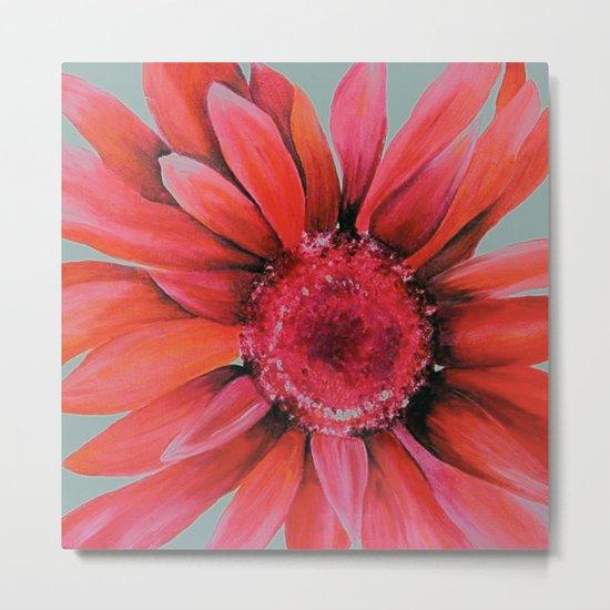 Pink Daisy Flower Metal Print