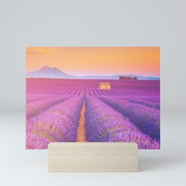 Dreams Field of Lavender in Sunset Landscape Photograph Mini Art Print