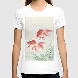 Oriental Goldfish illustration T-shirt