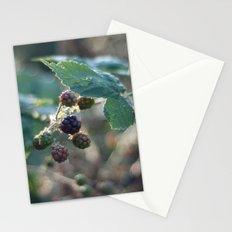 blackberries Stationery Cards