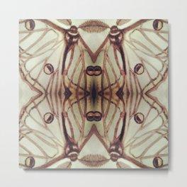 Spanish Moon Moth #3 Metal Print