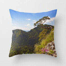 Pine tree at the Dunajec Canyon on the Polish border Throw Pillow