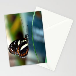 Doris Longwing Butterfly-2 Stationery Cards