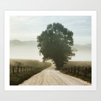 Tree of Life in Cades Cove, TN by Alli Gunter Photography  Art Print