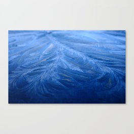 Cold as ice Canvas Print