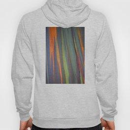 Rainbow Eucalyptus Magic Hoody
