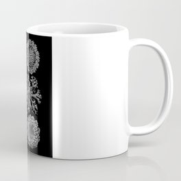 Lichens(Lichenes) by Ernst Haeckel Coffee Mug