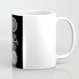 Lichens(Lichenes) by Ernst Haeckel Coffee Mug