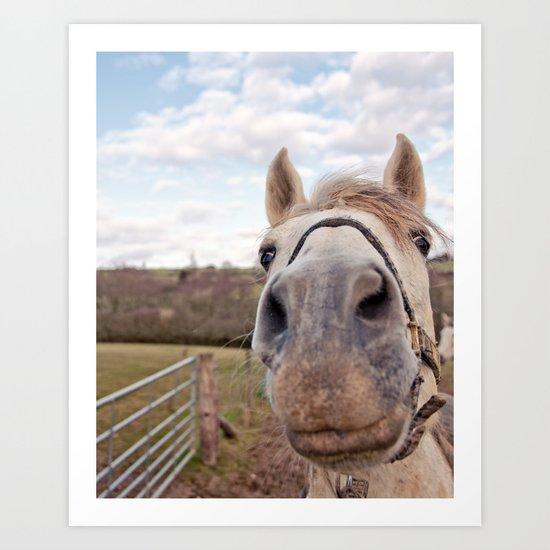look at my horse... Art Print