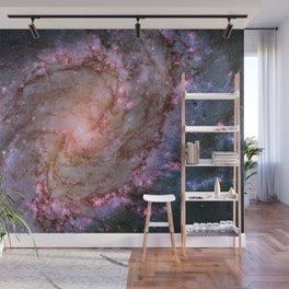Spiral Galaxy M83 Wall Mural