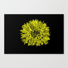 Stamped Wildflower in Yellow and Black Canvas Print