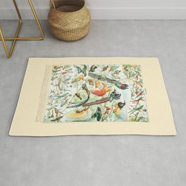 Exotic Birds // Oiseaux IV by Adolphe Millot 19th Century Science Textbook Diagram Artwork Rug