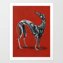 The Greyhound Art Print