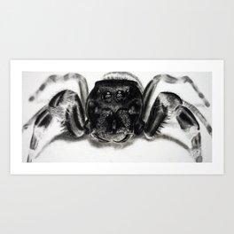 Arachnaphobia Art Print