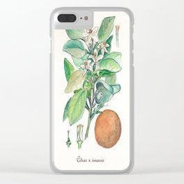 Citrus x Sinensis Clear iPhone Case