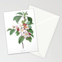HIGHEST QUALITY botanical poster of Apple tree Stationery Cards
