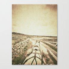 Horseback Ride in the Aran Islands Canvas Print