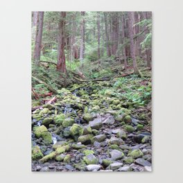 Sol Doc Falls Trail, colors Canvas Print