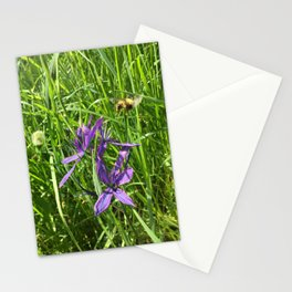 Camus Lily with Bee Stationery Cards