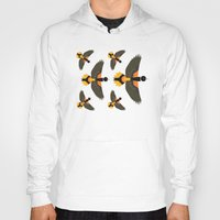 baltimore Hoodies featuring Baltimore Oriole  by Alysha Dawn