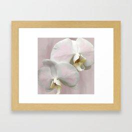 BLUSHING PINK ORCHIDS Framed Art Print
